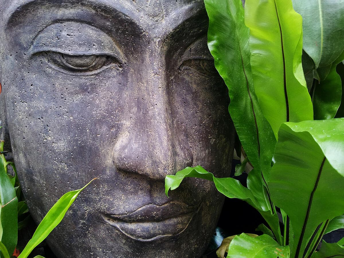Being spiritual and zen, letting go to energetic blocks